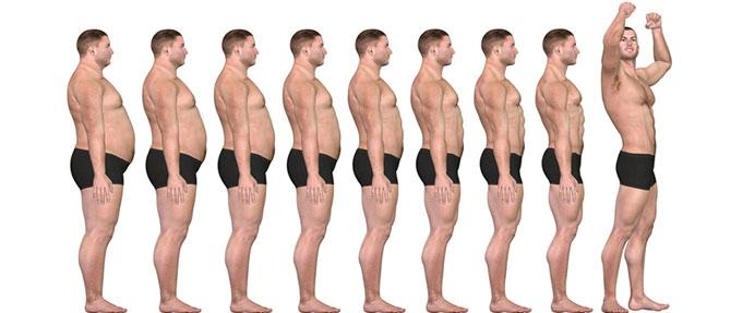 Норма тестостерона в организме