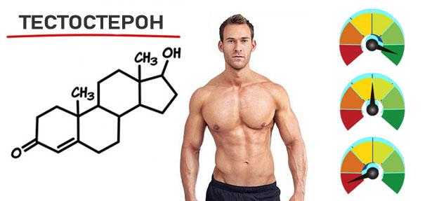 Норма уровня тестостерона