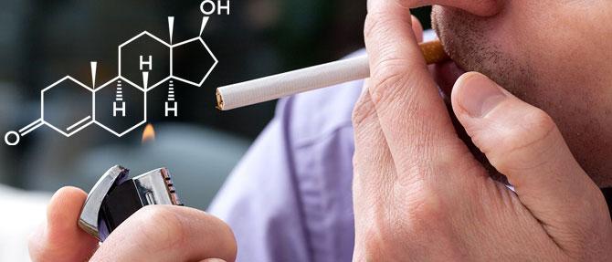 Тестостерон и курение