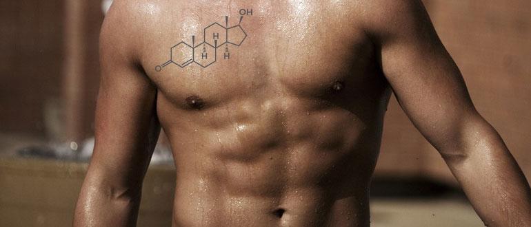 Уровень тестостерона у мужчин – норма