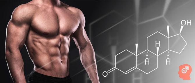 Что влияет на уровень тестостерона у мужчины