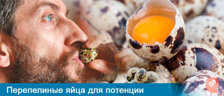 Перепелиные яйца для потенции
